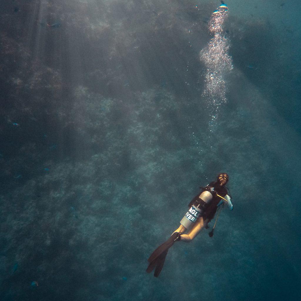 Dive with me - PADI TEC