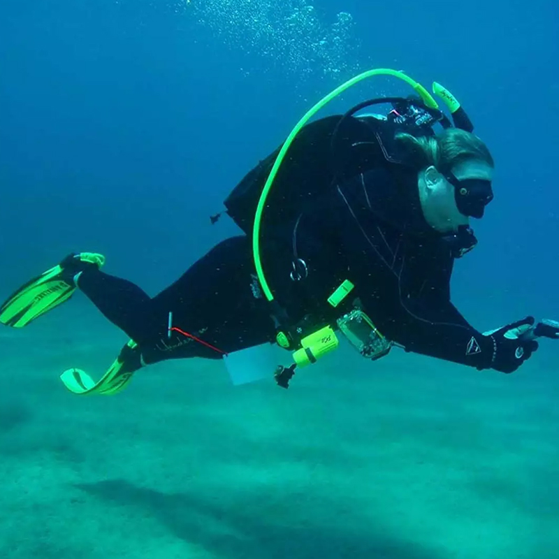 Dive with me - Padi Multilevel Diver
