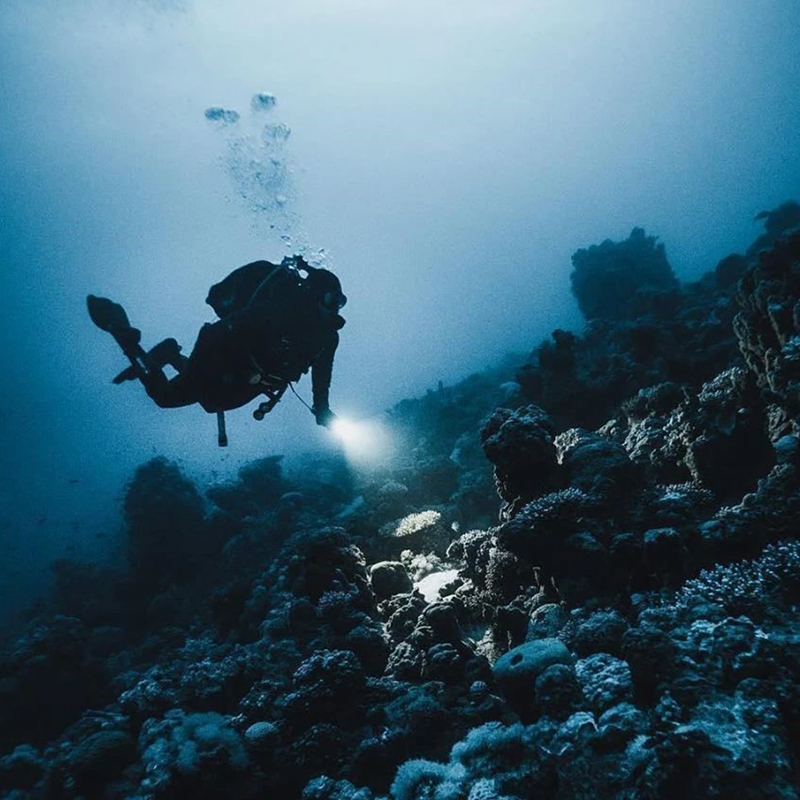 Dive with me - PADI Night Diver