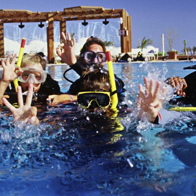 Dive with me - PADI Seal Team