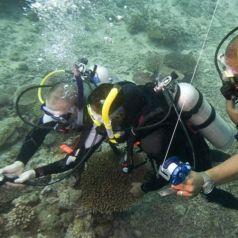 Dive with me - PADI Search and Recovery Diver