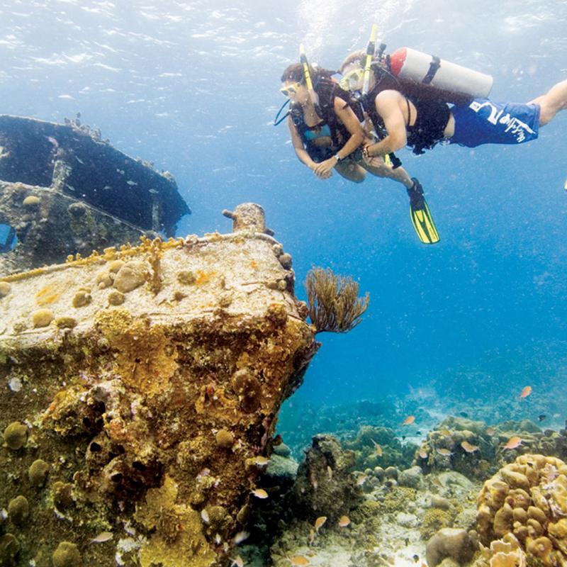 Dive with me - PADI Wreck Diver